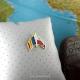 Insigna Romania - Polonia