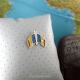 Insigna Romania - Moldova Incrucisat