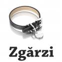 Zgarzi